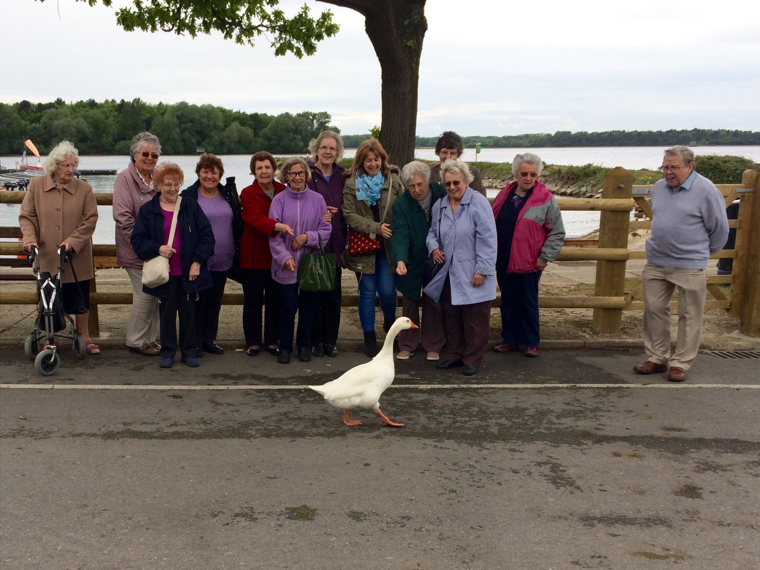 Womens fellowship cream tea outing